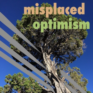 Misplaced Optimism