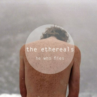 тнe eтнerealѕ: he who flies