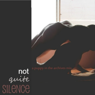 Not Quite Silence