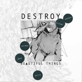 DESTROY BE▲UTIFUL THINGS