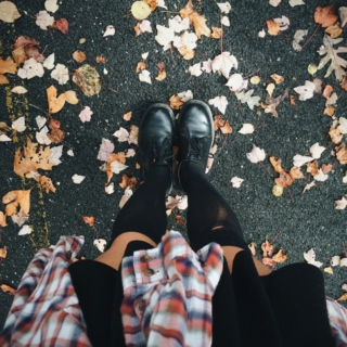 autumn leaves falling like pieces into place