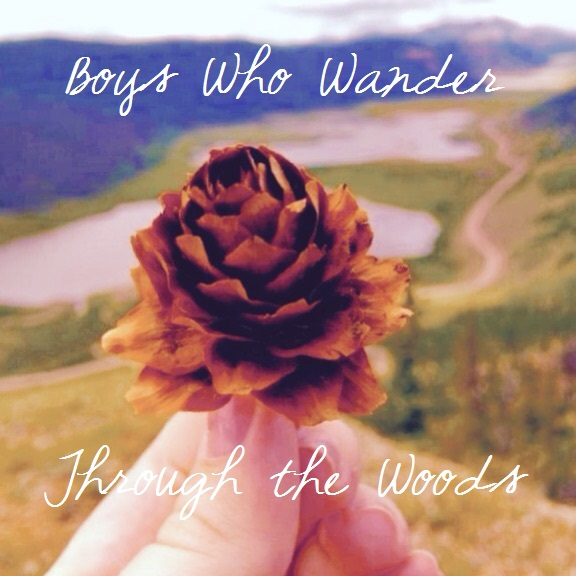 Boys Who Wander Through the Woods