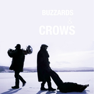 buzzards & crows