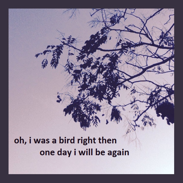 oh i was a bird right then, one day i will be again