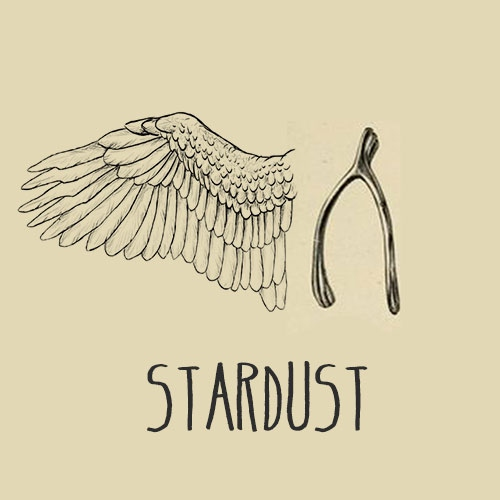 We're Stardust