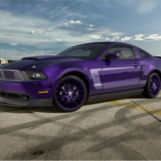 No Purple Rims
