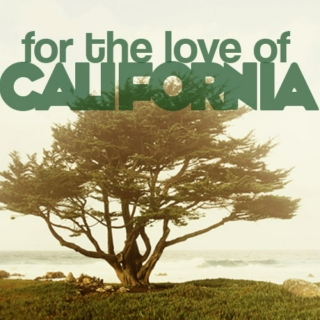 For the love of Cali... PART 1