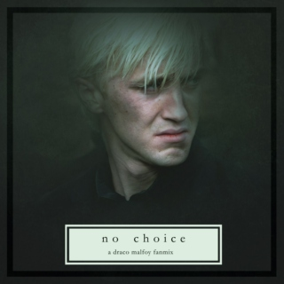 no choice - a draco malfoy fanmix