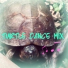 turtle dance mix
