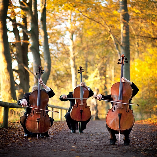 Get Low Like The Cello