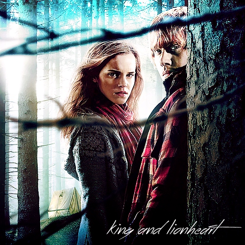 king and lionheart - a ron/hermione mix