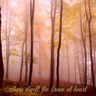 where dwell the brave at heart