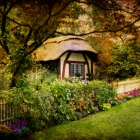 Writing: The Witch's House