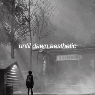 until dawn aesthetic