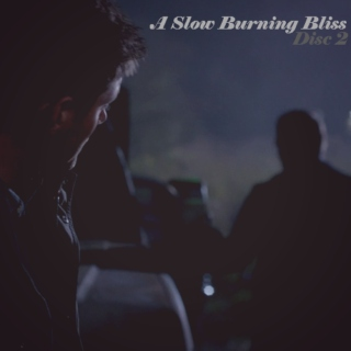 A Slow Burning Bliss, Disc 2