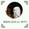 wrong kind of witch