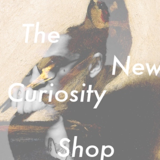 The New Curiosity Shop