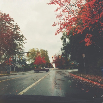 Autumnal Songs