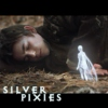 Silver Pixies