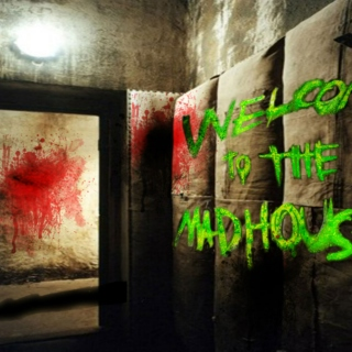 Welcome To The Madhouse