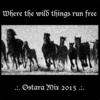 Where the Wild Things Run Free - Ostara Mix 2015