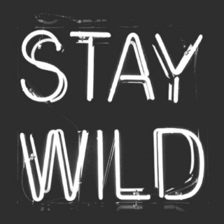 Just stay W!LD