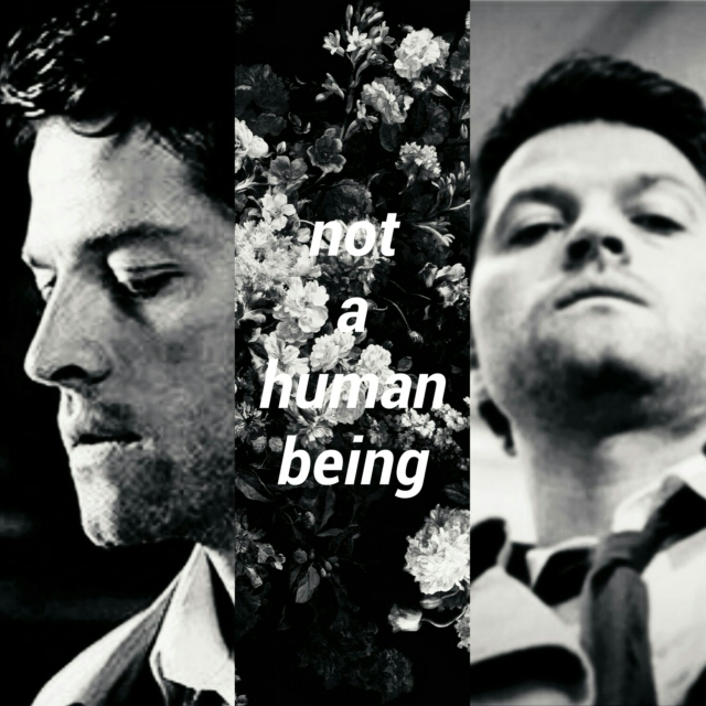 not a human being