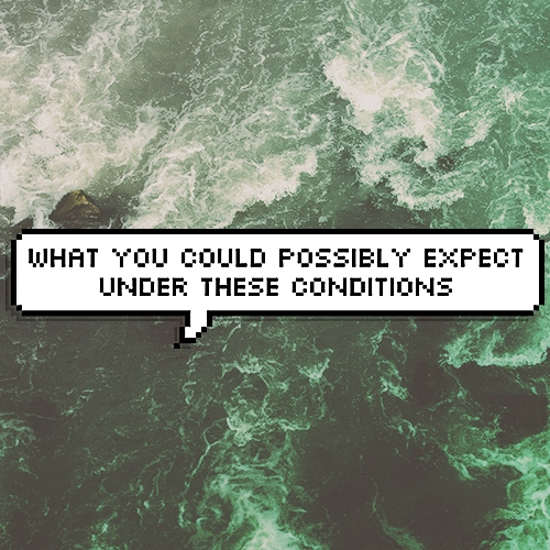 WHAT YOU COULD POSSIBLY EXPECT