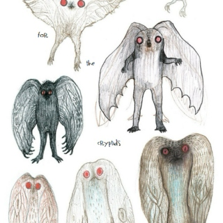 For the Cryptids