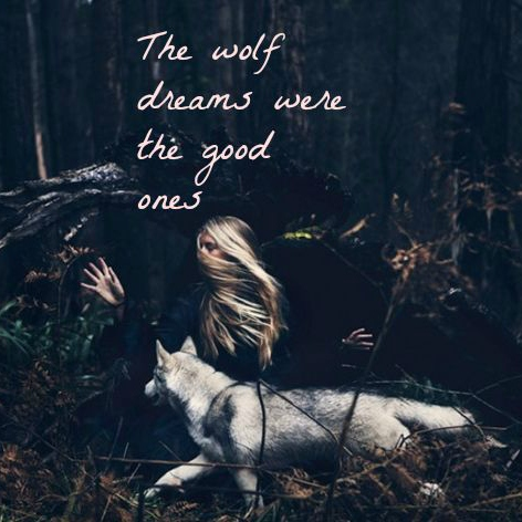 The wolf dreams were the good ones