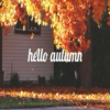 it's finally Autumn