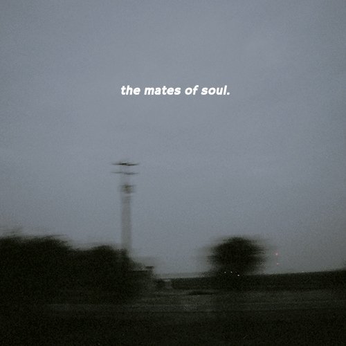 the mates of soul.