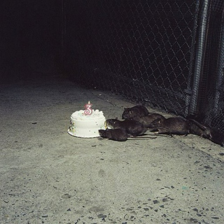 Happy Birthday and Other Lies