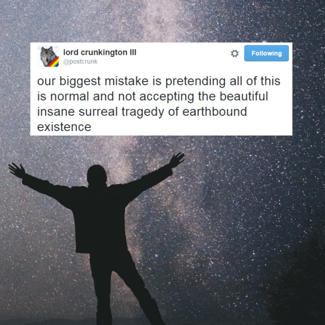 the beautiful insane surreal tragedy of earthbound existence
