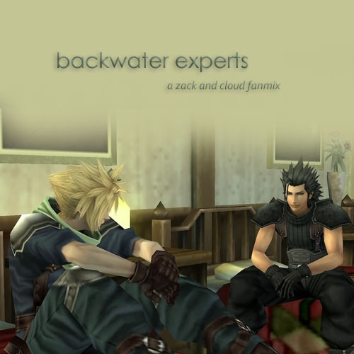 backwater experts