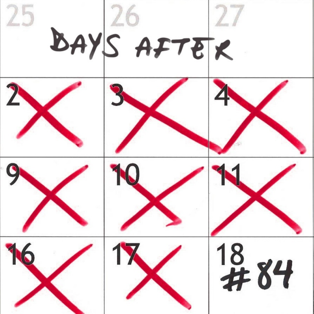 84 Days After
