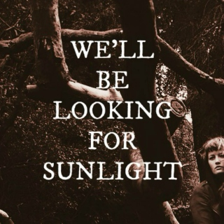 we'll be looking for sunlight