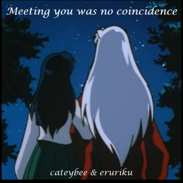 meeting you was no coincidence