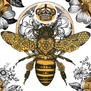 Songs for Queen Bees