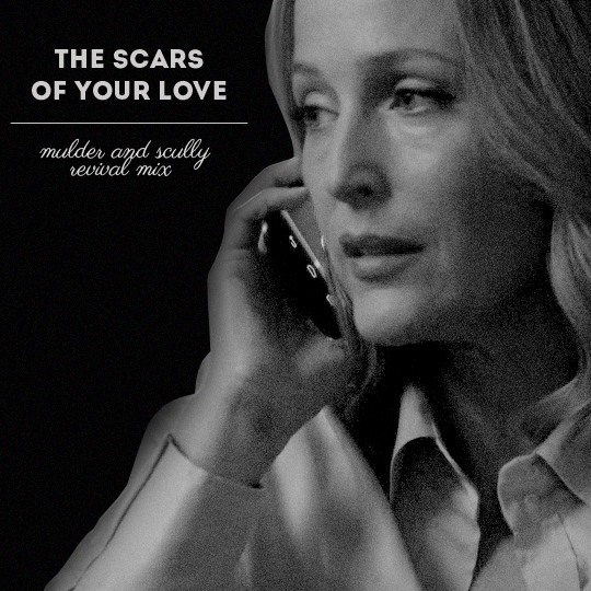 the scars of your love | msr