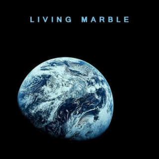 LIVING MARBLE