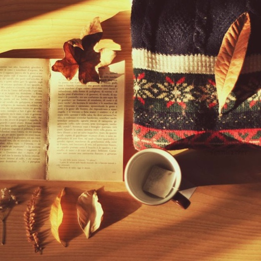 Get cozy and study
