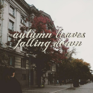 autumn leaves falling down;