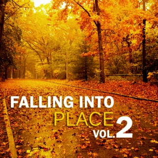 Falling into Place Vol. 2