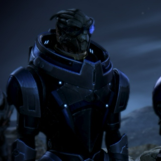Garrus' Battle Tracks