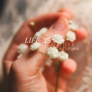 Life is beautiful, don't forget it