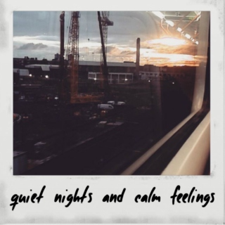 quiet nights and calm feelings