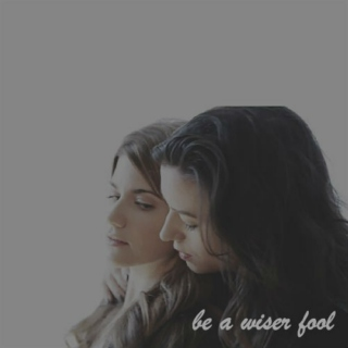 be a wiser fool // hollstein