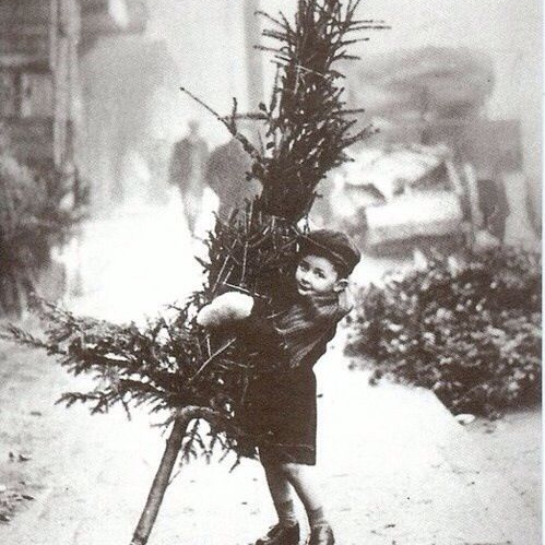 Vintage Christmas Excitement! ❆