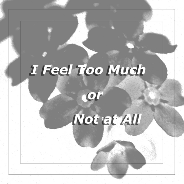 I Feel Too Much or Not at All (B.P.D.)